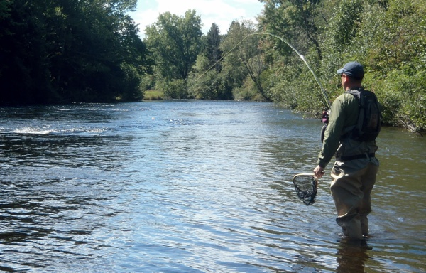 Connecticut river fishing report 9 3 for Fishing report ct