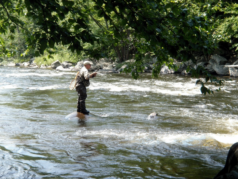 Connecticut river fishing report 8 11 for Connecticut river fishing