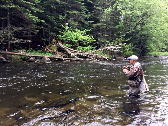 Upper connecticut river fishing report 6 10 tall timber for Connecticut river fishing
