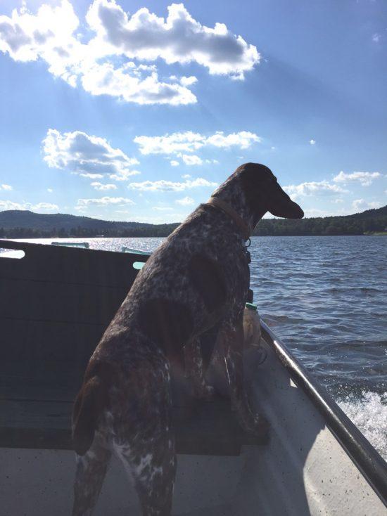monty-on-boat
