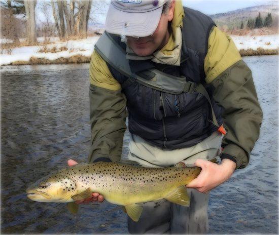 feb-22-brown-2