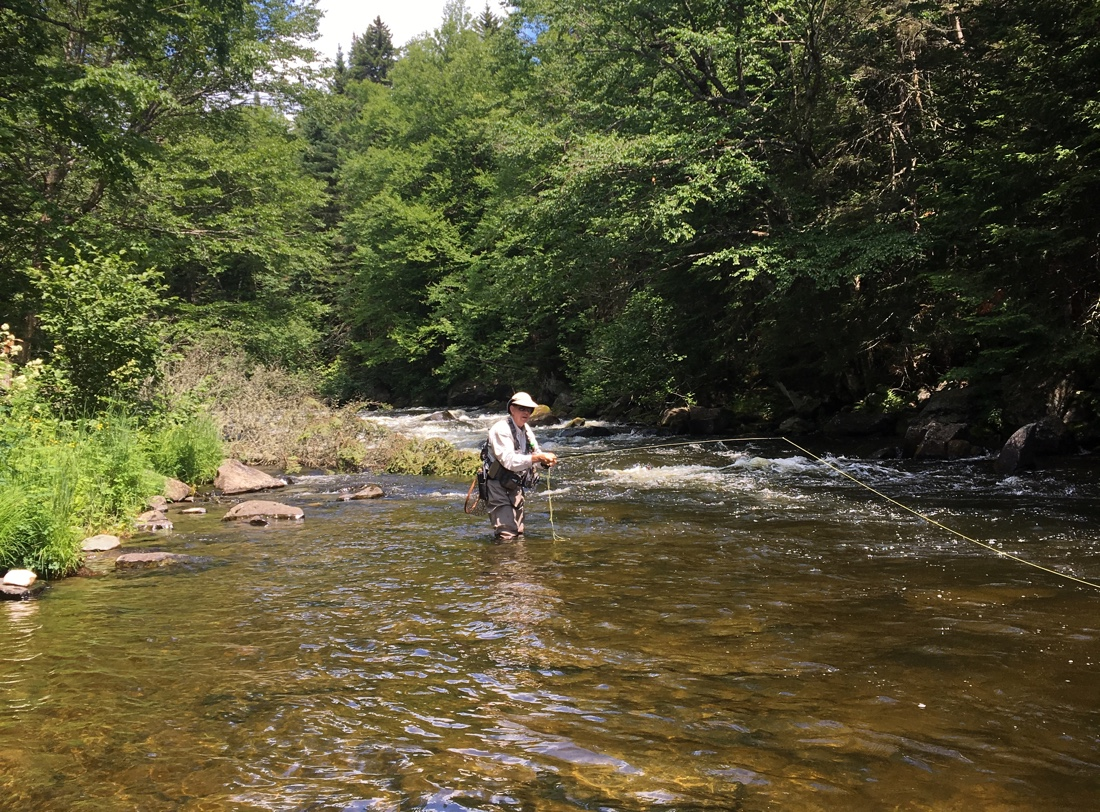 Upper connecticut river fishing report 7 12 tall timber for Connecticut river fishing